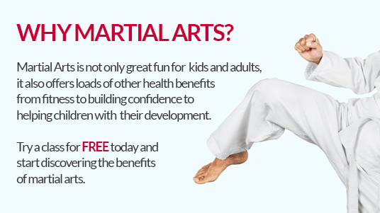 Why Martial Arts?